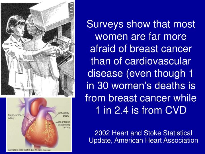 Surveys show that most women are far more afraid of breast cancer than of cardiovascular disease (even though 1 in 30 women's deaths is from breast cancer while 1 in 2.4 is from CVD