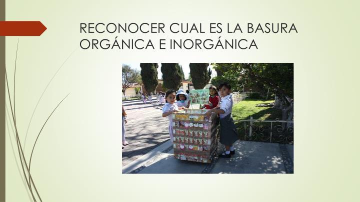 RECONOCER CUAL ES LA BASURA ORGÁNICA E INORGÁNICA