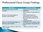 professional focus group findings
