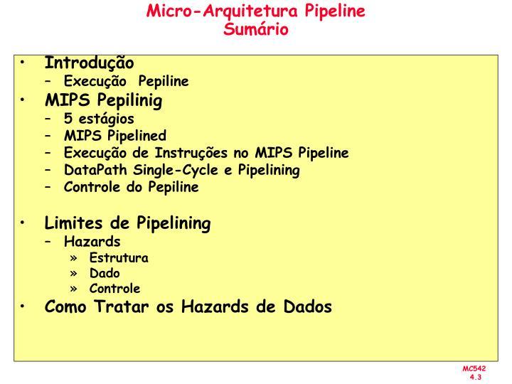 Micro-Arquitetura Pipeline
