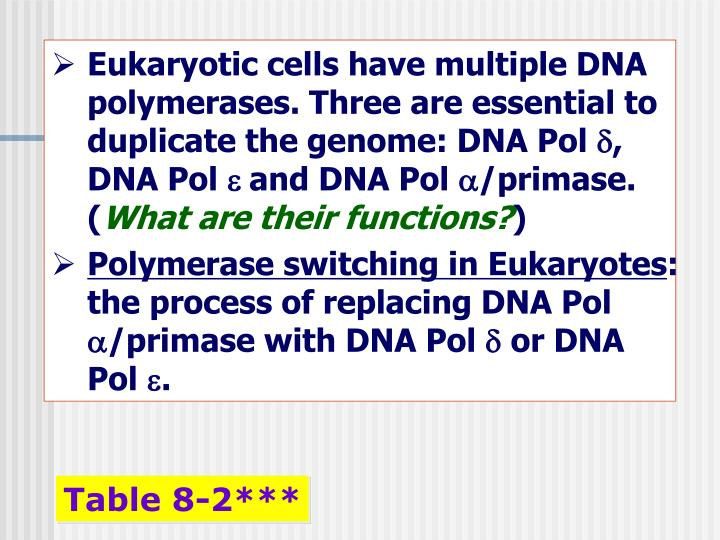 Eukaryotic cells have multiple DNA polymerases. Three are essential to duplicate the genome: DNA Pol