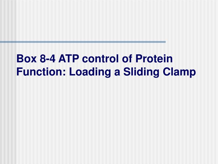 Box 8-4 ATP control of Protein Function: Loading a Sliding Clamp