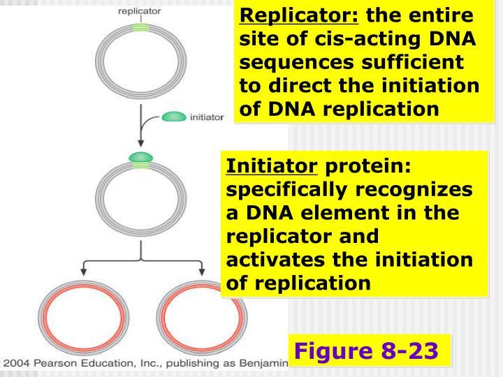 Replicator: