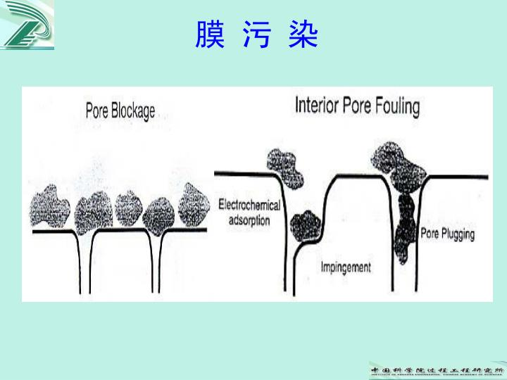 膜 污 染