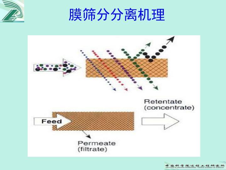 膜筛分分离机理