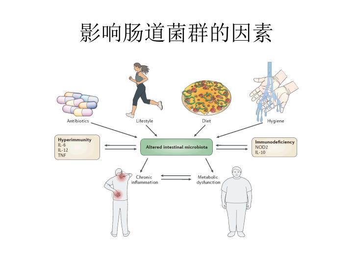 影响肠道菌群的因素