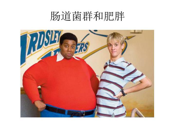 肠道菌群和肥胖