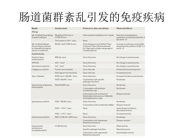 肠道菌群紊乱引发的免疫疾病