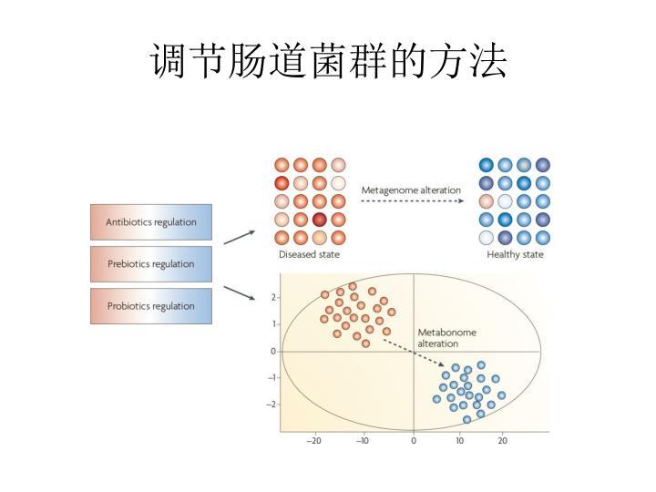 调节肠道菌群的方法