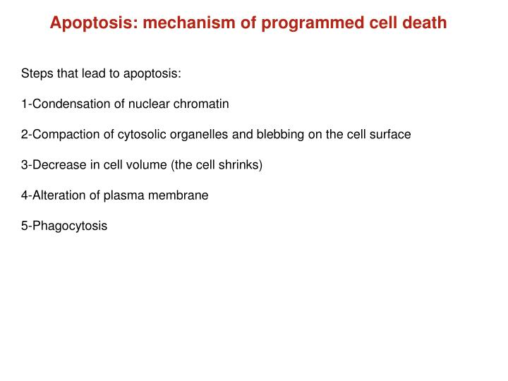 Apoptosis: mechanism of programmed cell death