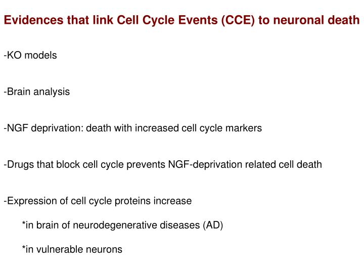 Evidences that link Cell Cycle Events (CCE) to neuronal death