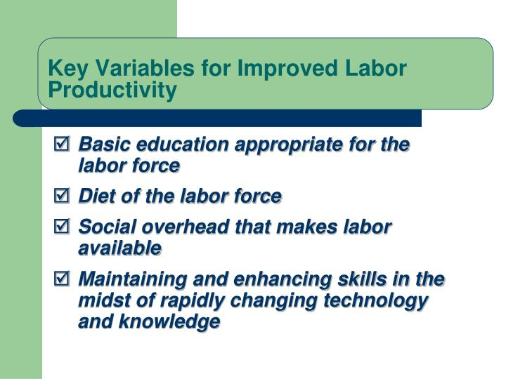 Basic education appropriate for the labor force