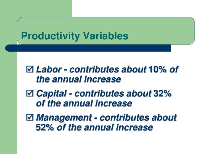 Productivity Variables