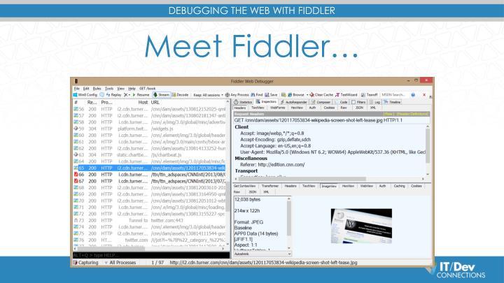 Meet Fiddler…