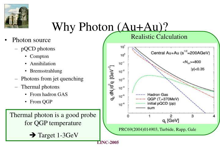 Why Photon (Au+Au)?