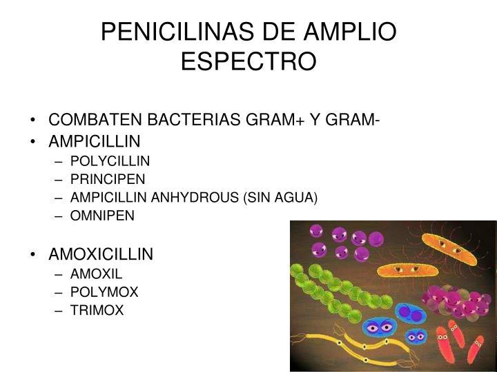 Penicilina v nombre comercial