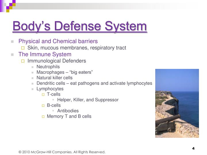 Body's Defense System