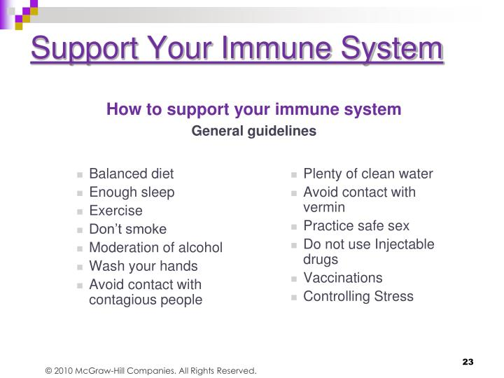 Support Your Immune System