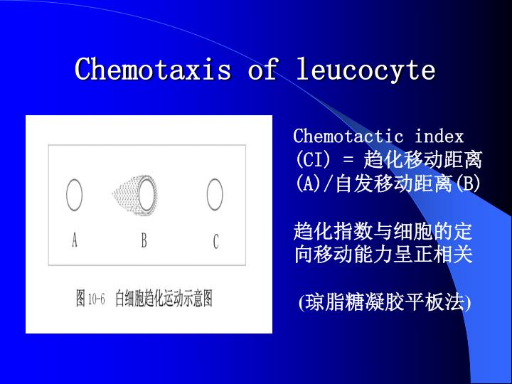 Chemotaxis of leucocyte