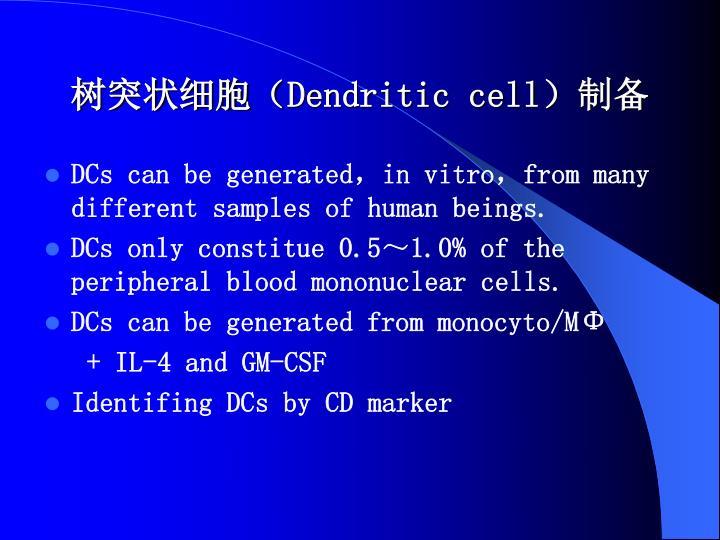 树突状细胞(