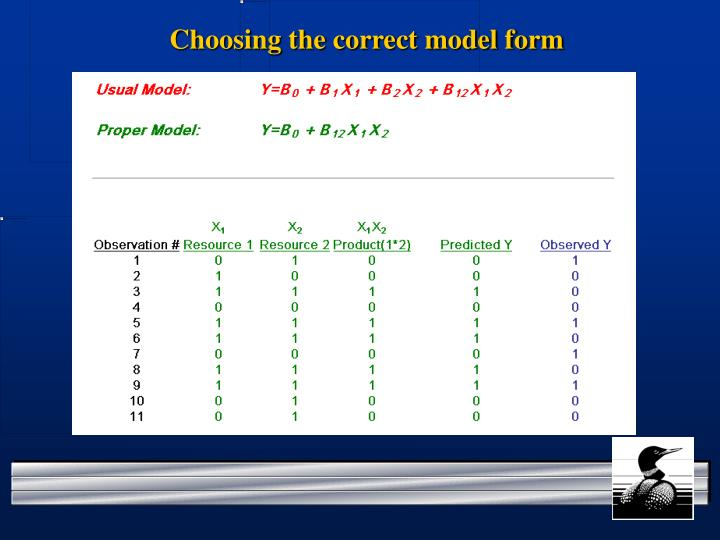 Choosing the correct model form
