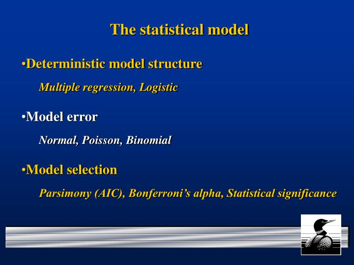 The statistical model