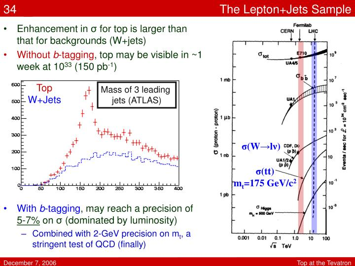 The Lepton+Jets Sample