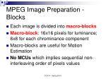 mpeg image preparation blocks