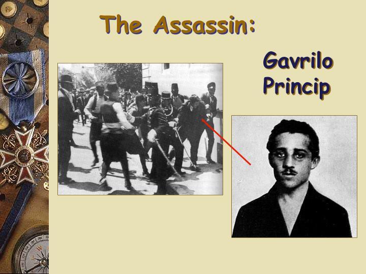 The Assassin: