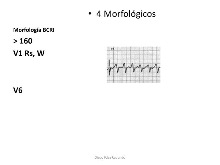 Morfología BCRI
