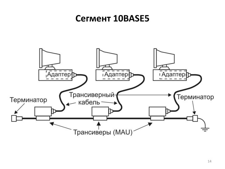 Сегмент 10