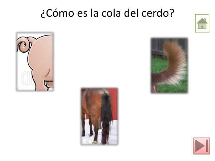 ¿Cómo es la cola del cerdo?