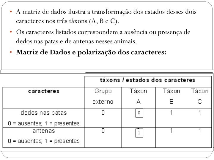 A matriz de dados ilustra a transformação dos estados desses dois caracteres nos três táxons (A, B e C).