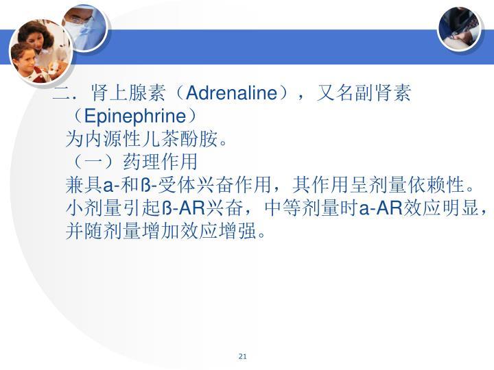 二.肾上腺素(