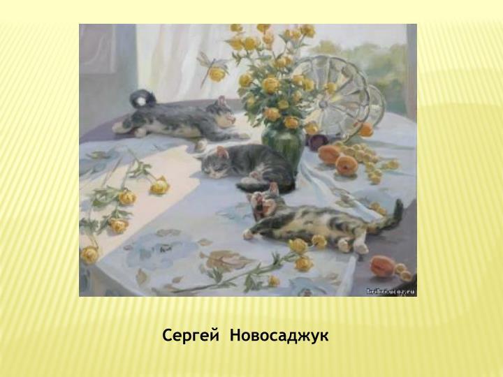 Сергей  Новосаджук