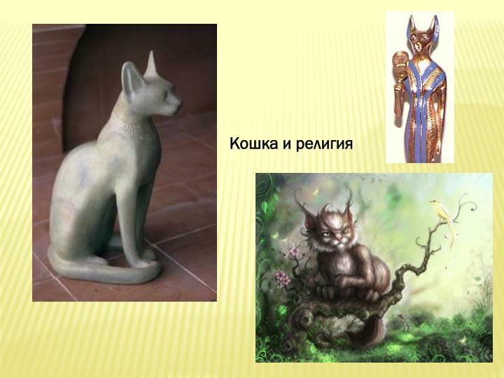 Кошка и религия