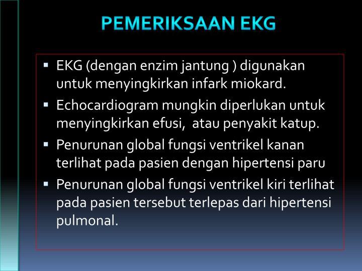 PEMERIKSAAN EKG