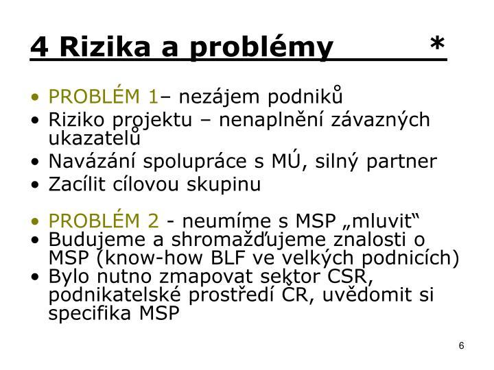 4 Rizika a problémy          *