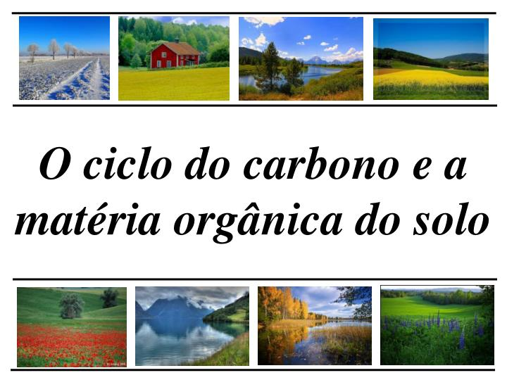 O ciclo do carbono e a matéria orgânica do solo