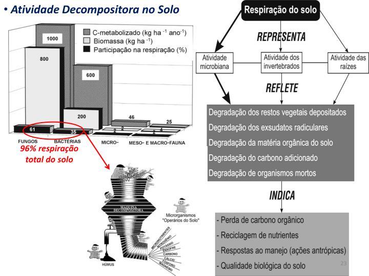 Atividade Decompositora no Solo