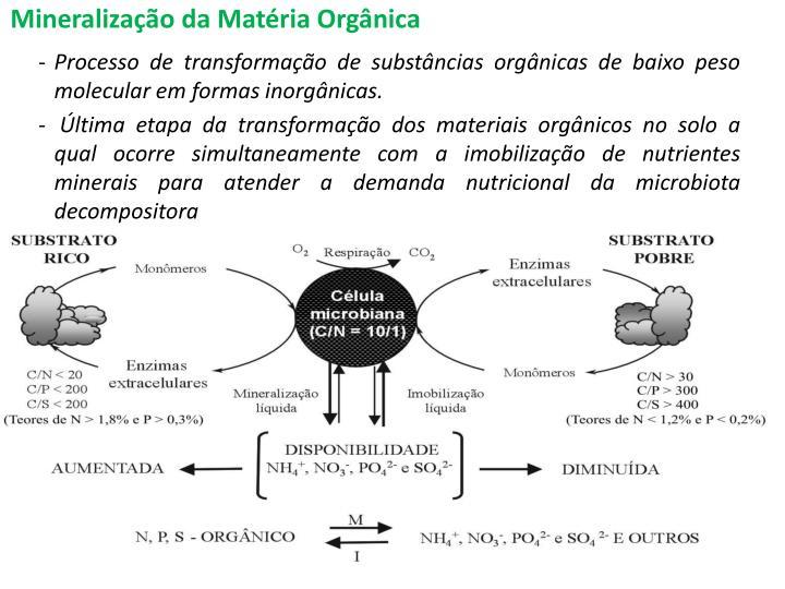 Mineralizao da Matria Orgnica