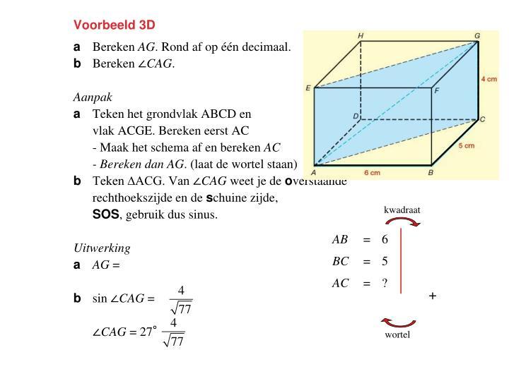 Voorbeeld 3D