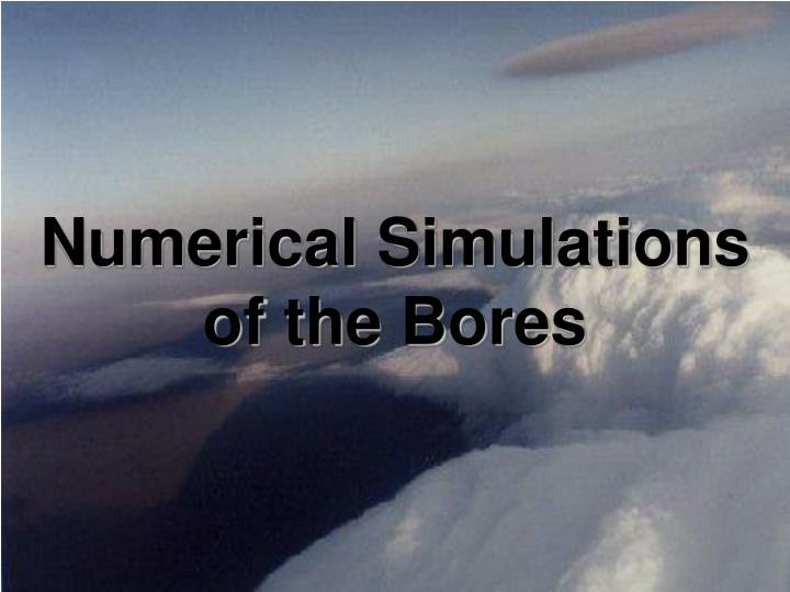 Numerical Simulations of the Bores