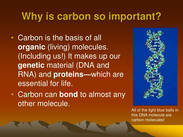 PPT - Where in the World is Carbon? PowerPoint
