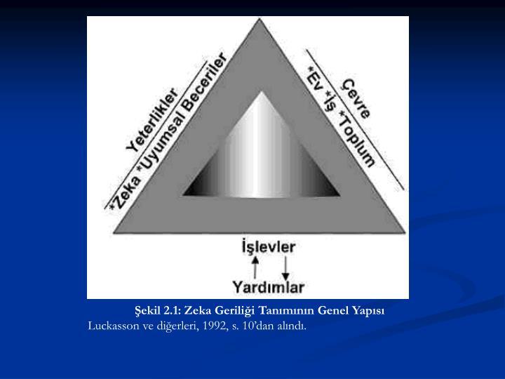 Şekil 2.1: Zeka Geriliği Tanımının Genel Yapısı