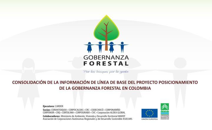 CONSOLIDACIÓN DE LA INFORMACIÓN DE LÍNEA DE BASE DEL PROYECTO POSICIONAMIENTO DE LA GOBERNANZA FORESTAL EN COLOMBIA