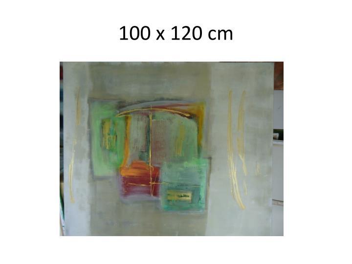 100 x 120 cm