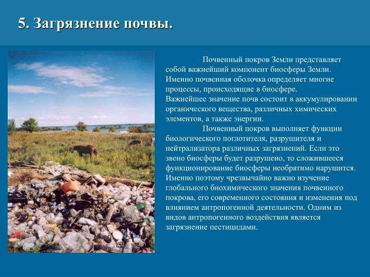 5. Загрязнение почвы.