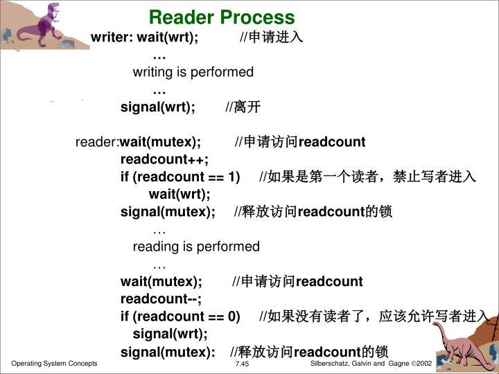 Reader Process