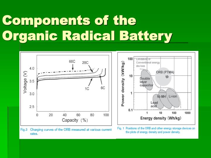 Components of the Organic Radical Battery